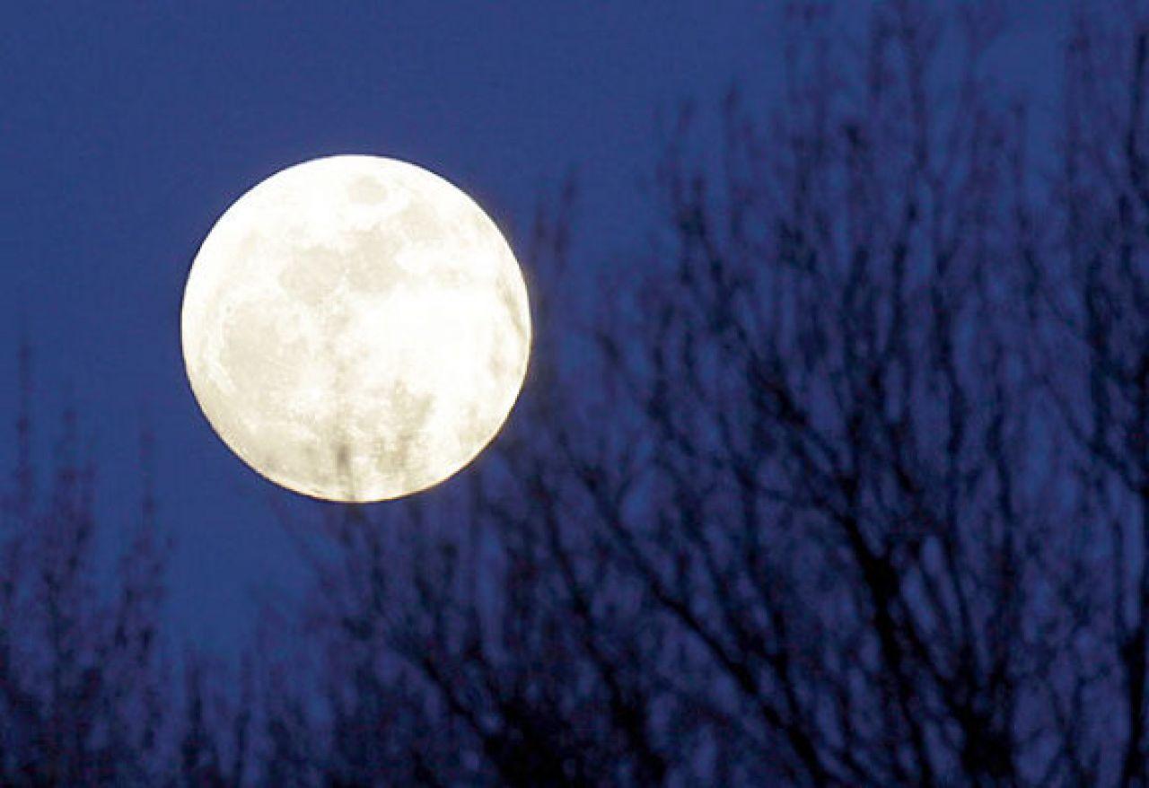 Di Lune e di Tartufi